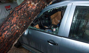 Νέα Σμύρνη: Δέντρο έπεσε και καταπλάκωσε αυτοκίνητα