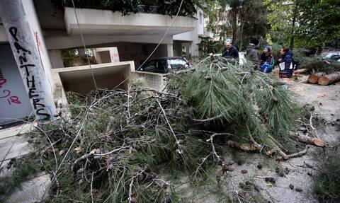 Κακοκαιρία: Στη δίνη της «Ωκεανίδας» η Αττική – Εγκλωβισμοί και καταστροφές από πτώσεις δένδρων
