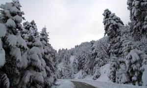 Καιρός: «Μικρή επιδείνωση την Τετάρτη, είμαστε σε δύσκολο χειμώνα»... (Video)