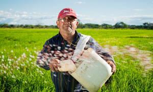 ΕΦΚΑ - Αγρότες: Πότε θα γίνει η καταβολή εισφορών Ιανουαρίου 2019