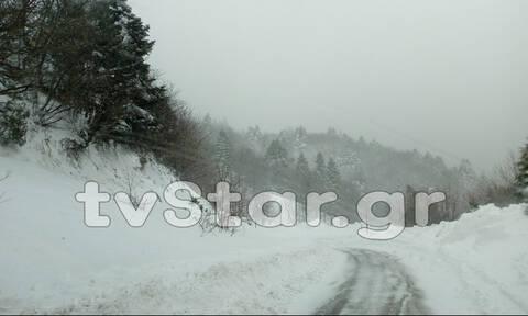 «Θάφτηκε» στο χιόνι η Εύβοια: Διακοπές ρεύματος και σοβαρά προβλήματα από την κακοκαιρία (pics)