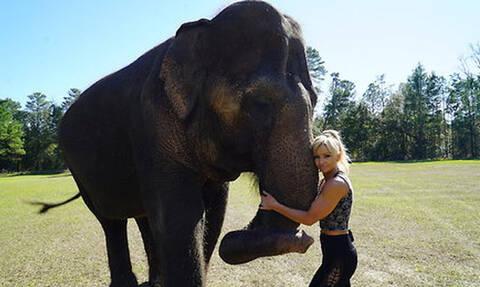 Δεν θα πιστέψεις τη σχέση που έχει αυτή η γυναίκα με έναν ελέφαντα (video)