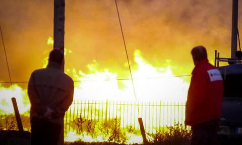 Λάρισα: Σε ύφεση η μεγάλη φωτιά στο εργοστάσιο παλετών  (pics+vids)