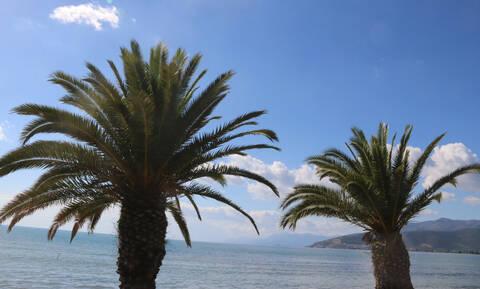 Καιρός για βόλτες κάτω από τον ήλιο: Πόσο θα δείξει ο υδράργυρος τις επόμενες ημέρες (ΧΑΡΤΕΣ)