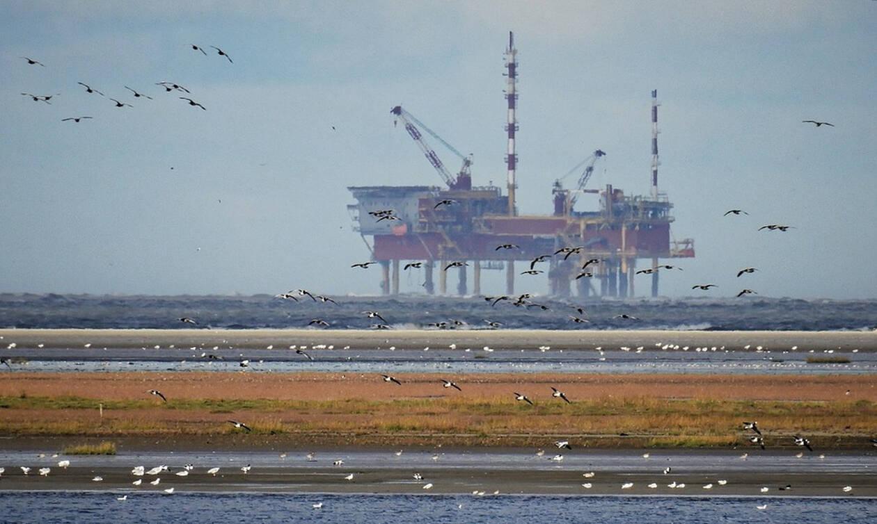 Ιταλία: Κατέρρευσε γερανός σε εξέδρα άντλησης πετρελαίου - Αγνοείται ένας άντρας