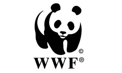 Παγκόσμια έκθεση WWF: Επιλύοντας το πρόβλημα της πλαστικής ρύπανσης μέσω της ανάληψης ευθυνών