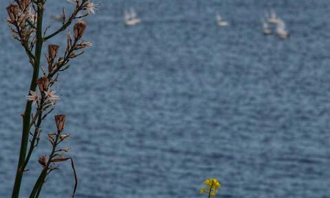 Λουτράκι: Κοίταξαν στη θάλασσα και «πάγωσαν» με αυτό που αντίκρισαν
