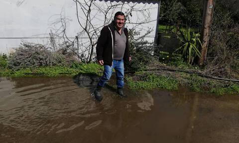 Το Newsbomb.gr στη Χαλκίδα: Αγανακτισμένοι οι κάτοικοι - Το νερό έχει καλύψει τα πάντα (pics&vids)