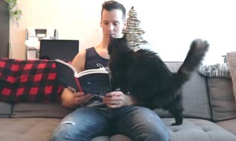 Απολαυστικό: Θέλει να διαβάσει βιβλίο παρέα με τις γάτες του - Θα τα καταφέρει; (vid)