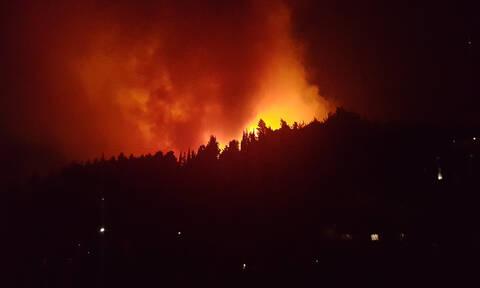 Πήλιο: Ολονύχτια «μάχη» με τις φλόγες στο Πουρί – Κάηκαν δύο στρέμματα καστανιές