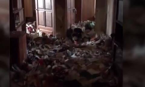 Φρίκη με 5χρονη «Μόγλη»: Ζούσε σε διαμέρισμα με σκουπίδια και κατσαρίδες (vid)