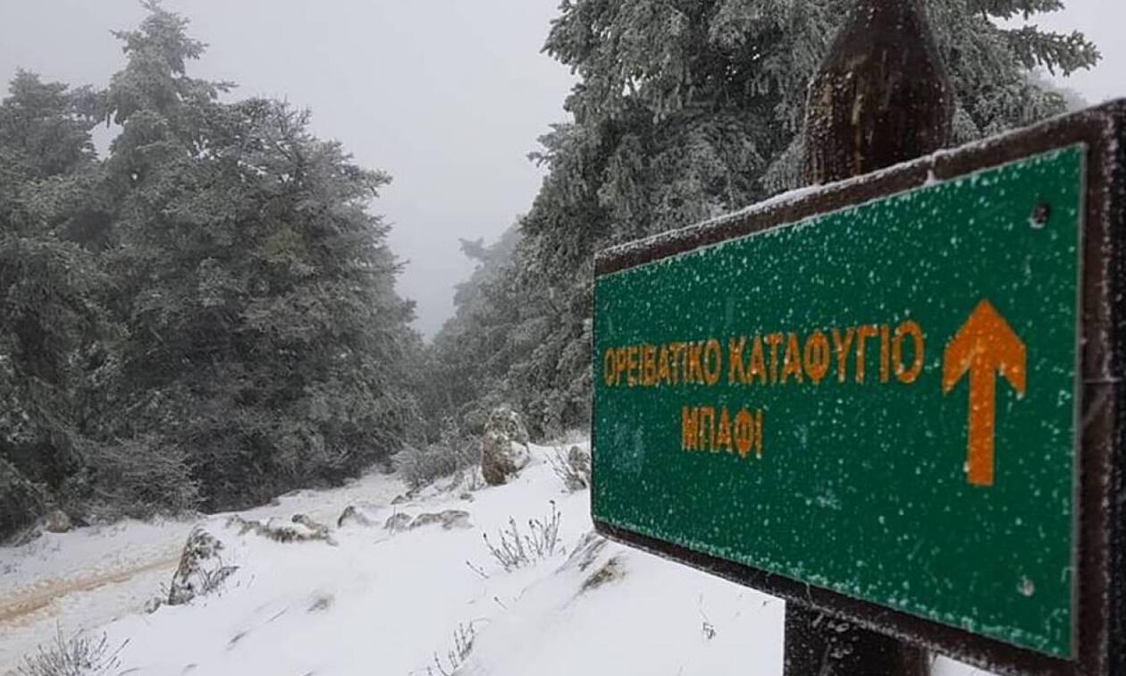 Καιρός: Ξανά στα λευκά η κορυφή της Πάρνηθας! Δείτε εικόνα από το Καταφύγιο Μπάφι (video)