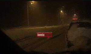Καιρός: Χάος από τον χιονιά στη Φθιώτιδα - «Δίπλωσαν» 30 νταλίκες στην εθνική οδό (pics)