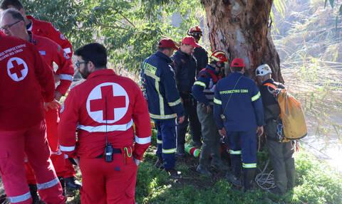 Τροχαίο - Κρήτη: Κοιτούσαν τη θέα κι έπεσαν στο γκρεμό - Πώς σώθηκε η μητέρα και τα παιδιά της