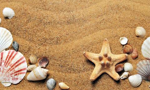 ΟΑΕΔ: Πώς θα κάνετε δωρεάν διακοπές με τα παιδιά σας - Τα κριτήρια και οι δικαιούχοι