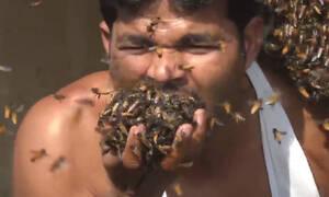 Τρομακτικό! Βάζει χιλιάδες μέλισσες στο στόμα του μαζεύοντας μέλι (vid)
