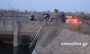 Πλατύ Ημαθίας: Διέσωσαν λύκο που είχε εγκλωβιστεί στα νερά αρδευτικού καναλιού (vid)