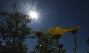 Καιρός: Ανεβαίνει και άλλο η θερμοκρασία - Πού θα φτάσει τους 25 βαθμούς