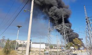 Μεγάλη φωτιά ΤΩΡΑ στην Παιανία: Οι πρώτες εικόνες από το σημείο
