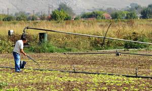 Απίστευτο περιστατικό στην Κρήτη: Γιατί κάνουν «φτερά» τα ρολόγια άρδευσης;
