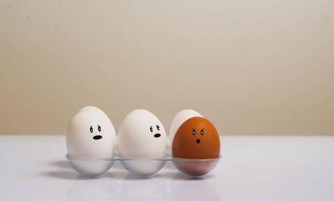 Ποια είναι η διαφορά ανάμεσα στα λευκά και τα κίτρινα αυγά;