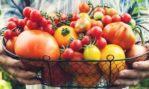 Ντομάτες: Ποια είναι τα οφέλη τους για τον οργανισμό ανάλογα με το χρώμα τους (pics)