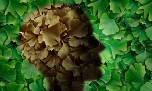 Αυξημένος ο κίνδυνος για Αλτσχάιμερ αν υπάρχει σχετικό οικογενειακό ιστορικό