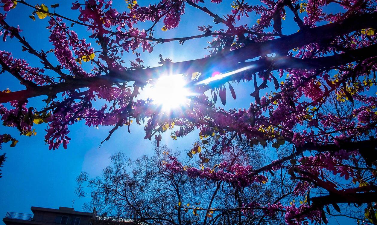 Καιρός 25ης Μαρτίου – Αρνιακός: Με ήλιο, αλλά και θυελλώδεις ανέμους οι παρελάσεις – Πού θα βρέξει