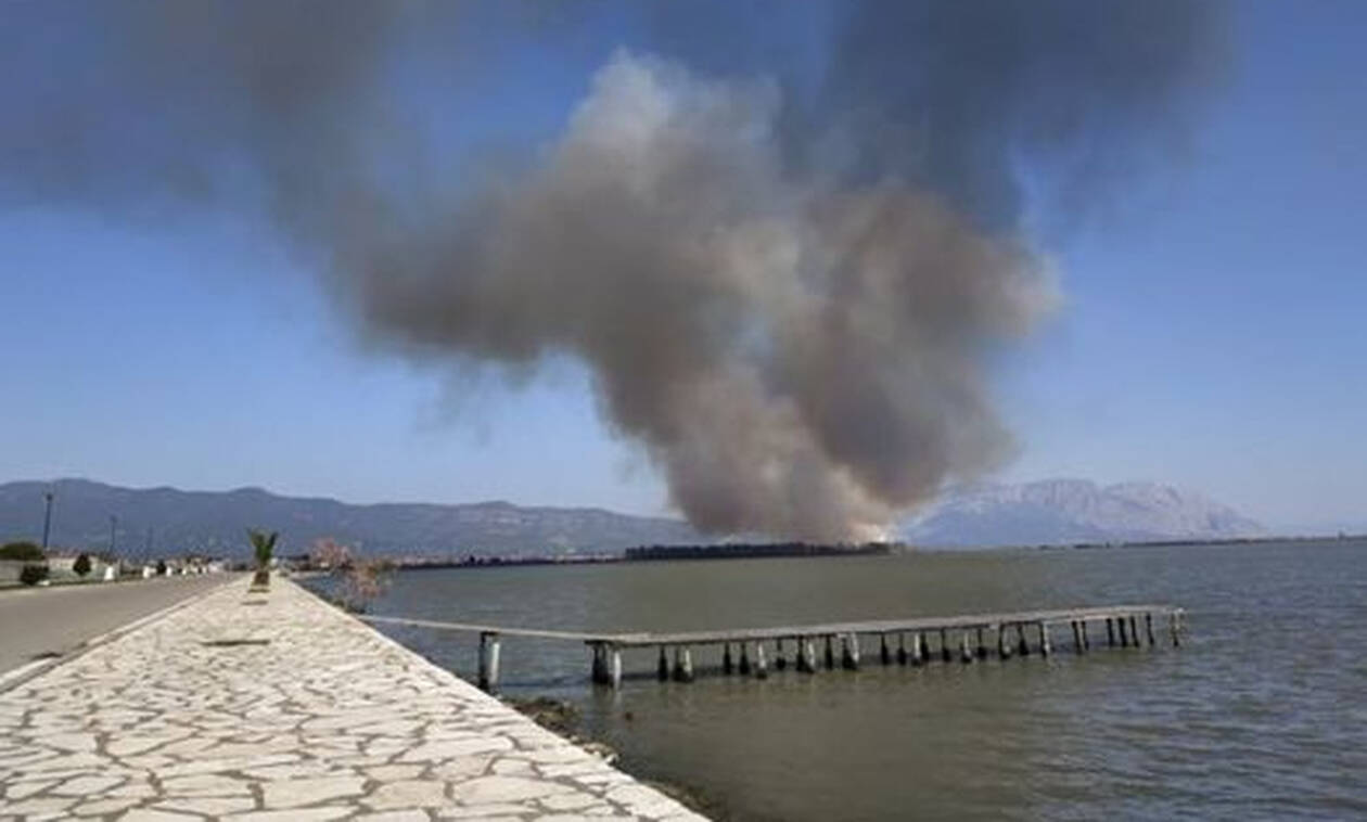Κατασβέστηκε η μεγάλη φωτιά στην ανατολική πλευρά του Μεσολογγίου (pics)