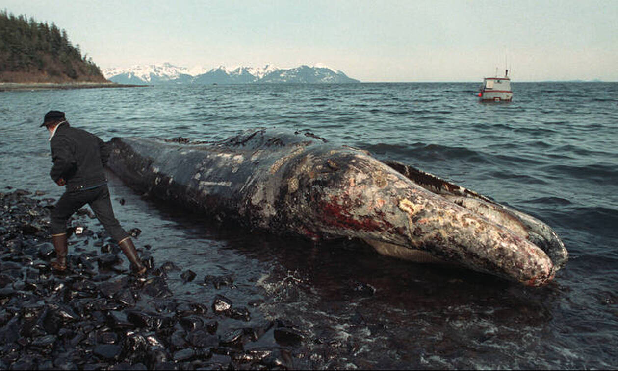 Exxon Valdez: 30 χρόνια από την ασύλληπτη περιβαλλοντική καταστροφή, τι έχουμε διδαχθεί;