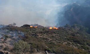 Φωτιά σε δύσβατο σημείο στην Ιεράπετρα