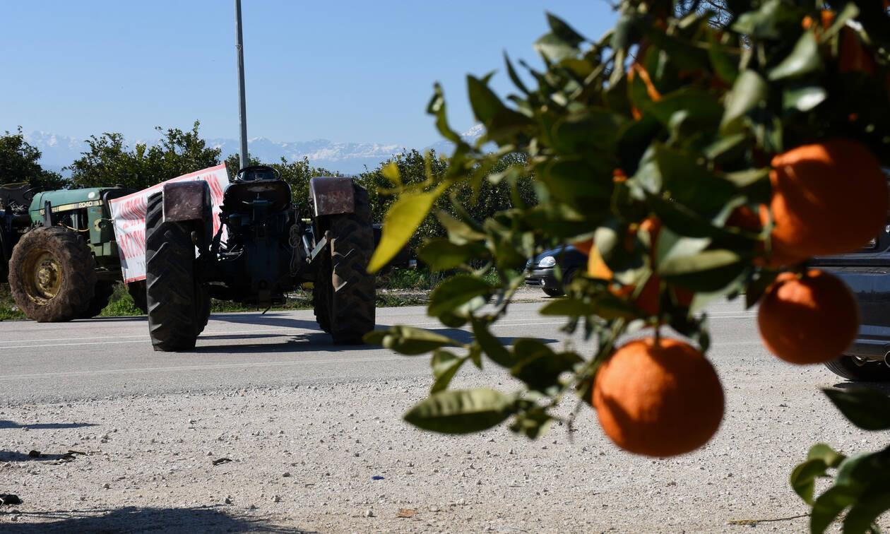 Τραγωδία στην Κρήτη: Εντοπίστηκε νεκρός αγρότης κάτω από το τρακτέρ του