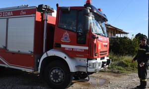 Θρίλερ στην Ηλεία: «Χτενίζουν» την περιοχή για τον εντοπισμό 50χρονης που εξαφανίστηκε (pics)