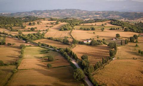 Δασικοί χάρτες: Ολοκλήρωση διαδικασίας - Παράταση στις πυρόπληκτες περιοχές