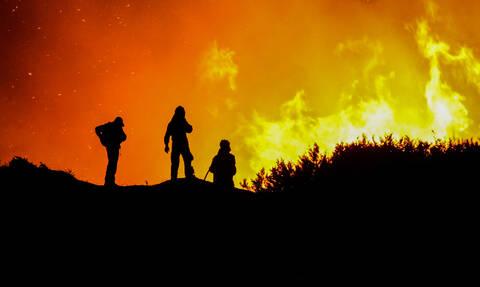 Ηλεία: Βελτιώνεται η εικόνα της φωτιάς στο δάσος της Στροφυλιάς (pics&vids)