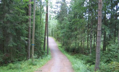 Παράταση στην υποβολή αντιρρήσεων για δασικούς χάρτες