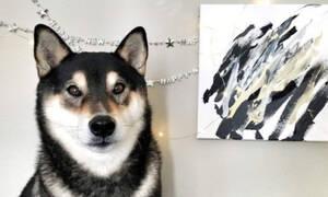 Αυτός ο σκύλος είναι πιο πλούσιος από εσένα επειδή... ζωγραφίζει! (video)