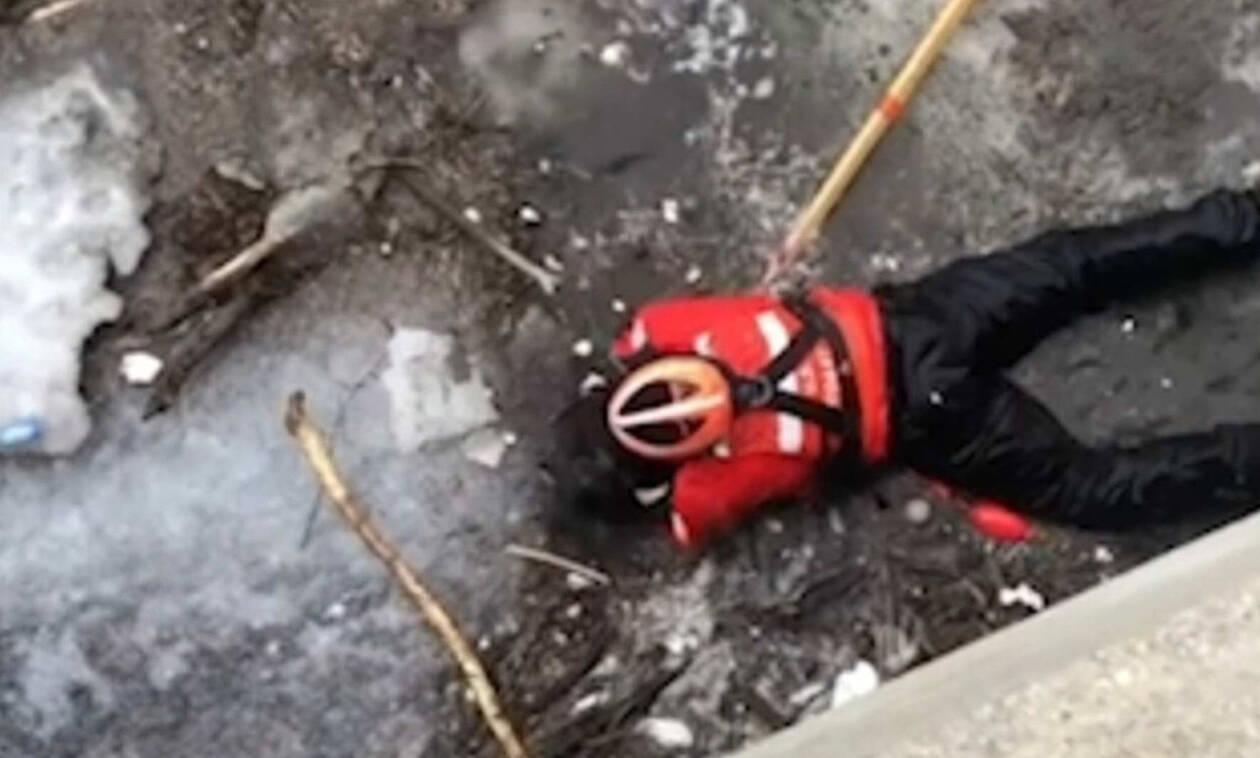 Αληθινή ηρωίδα: Έσωσε κουτάβι από βέβαιο θάνατο (pics)