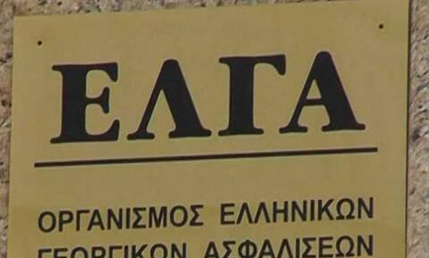 ΕΛΓΑ: Στο ταμείο για πληρωμές αποζημιώσεων 25 εκατ. ευρώ
