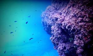 Δύο ελληνικά νησιά ανταγωνίζονται Μπαχάμες και Μαλδίβες (pics)