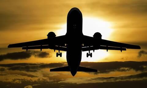 Χάος στο αεροδρόμιο: Δείτε τι «εισέβαλε» στον αεροδιάδρομο
