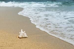 Τρόμος: Αν φωτογραφηθείς σ' αυτή την παραλία, κινδυνεύεις με θάνατο!