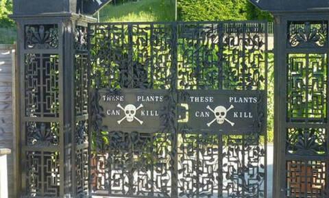 Ο πιο επικίνδυνος κήπος στον κόσμο - Αν μπεις ίσως να μην ξαναβγείς (photo)