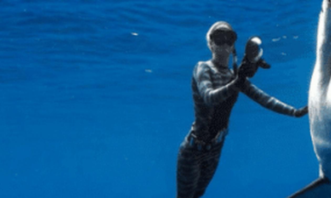 Τρομερό: Δες με τι «τέρας» της θάλασσας έβγαλε φωτογραφία! (pics)