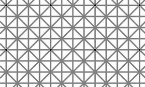 Κουίζ: Εσύ πόσες μαύρες τελείες βλέπεις;