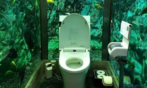 Ιαπωνία: Σ'αυτήν την τουαλέτα οι πελάτες κάνουν την... ανάγκη τους χαζεύοντας ψάρια! (pics+vid)