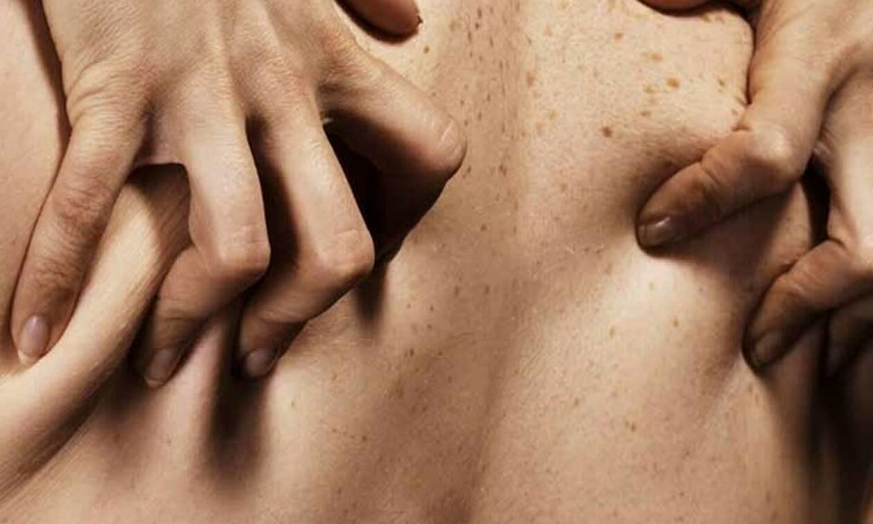 καλύτερο μαύρο όργιο δωρεάν πορνό βίντεο της Τζένα Τζέιμσον
