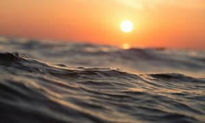 Αν το δεις δεν θα ξαναμπείς στη θάλασσα!