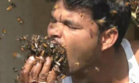 Ινδός το τερμάτισε: Βάζει στο στόμα του εκατοντάδες μέλισσες! (video)