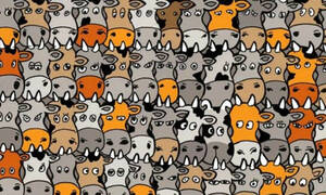 ΚΟΥΙΖ: Μπορείς να εντοπίσεις τον σκύλο;